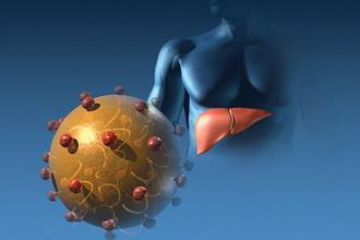 Гепатит: вопросы и ответы